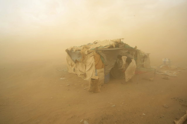 A gold mine worker takes shelter from a sandstorm in Al-Ibedia locality at River Nile State, July 30, 2013. (Photo by Mohamed Nureldin Abdallah/Reuters)