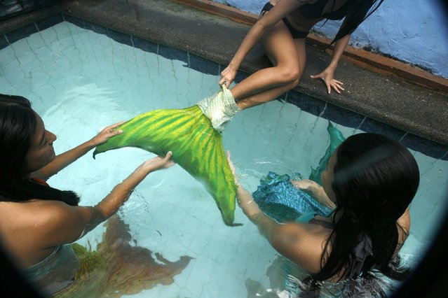 A Filipino mermaid swimming student has her tail removed by other students during a lesson by the Philippines Mermaid Swimming Academy at Dive Republic pool in Quezon City, eastern Manila, Philippines, 15 June 2013. The Philippine Mermaid Swimming Academy (PMSA) was created in 2012 in Boracay by Normeth Preglo of The Philippines and US swimming instructor Djuna Rocha. The swimming lessons were brought to Manila in April 2013. The price for a two-hour class is 37 US dollars. (Photo by Dennis M. Sabangan/EPA)