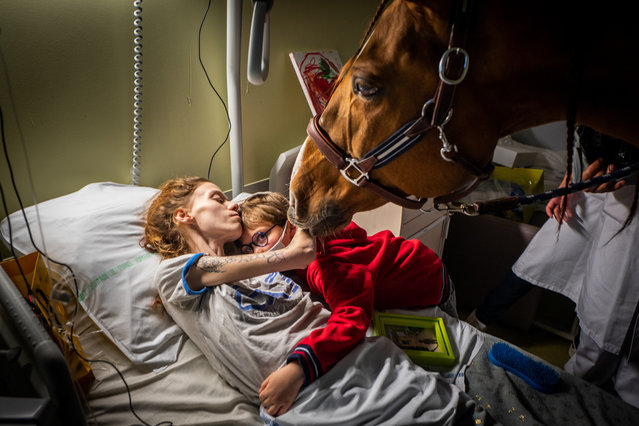 Daily Life Story First Prize. Marion, who has metastatic cancer, embraces her son Ethan in the presence of Peyo, a horse used in animal-assisted therapy, in the Séléne Palliative Care Unit at the Centre Hospitalier de Calais, in Calais, France. (Photo by Jeremy Lempin/Istanbul Photo Awards 2021)