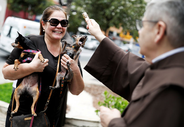 A woman holds her dogs as a priest blesses them outside Sao Francisco de Assis (Saint Francis of Assisi) Church in Sao Paulo, Brazil, October 4, 2018. Pet owners bring their animals to be blessed every year on the day of St. Francis of Assisi, patron saint of animals. (Photo by Nacho Doce/Reuters)