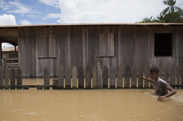 A man walks in a neighbourhood flooded by the Purus river, which continues to rise from days of heavy rainfall in the region, in Boca do Acre, Amazonas state March 14, 2015. (Photo by Bruno Kelly/Reuters)