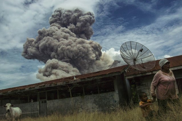 In this photograph taken on April 1, 2015, an Indonesian resident and child walk away from an abandoned school building as Mount Sinabung erupts in Karo district on the Indonesian island of Sumatra. According to authorities about 3,500 people were displaced after the February 2014 eruption of Mount Sinabung volcano and many are still living in evacuation centers as the volcano remains active. (Photo by Sutanta Aditya/AFP Photo)