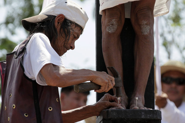 The foot of a Filipino penitent is nailed to a wooden cross during the re-enactment of the crucifixion of Jesus Christ on Good Friday, in San Juan village, San Fernando city, north of Manila, Philippines, 03 April 2015. Every year, thousands of foreign and local visitors flock to San Pedro Cutud village, San Fernando city. (Photo by Ritchie B. Tongo/EPA)