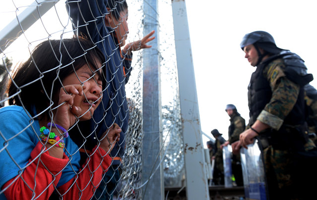 A migrant girl cries while holding onto wire fencing at the Greek-Macedonian border, near the Macedonian city of Gevgelija, 22 February 2016. Macedonia confirmed that it is only allowing Syrian and Iraqi refugees through, matching a decision by its northern neighbour, Serbia. Around 5,000 people were waiting at the border on 22 February, local reports said, quoting witnesses. All want to continue their journey across Macedonia, Serbia, Croatia, Slovenia and then Austria, with Germany the final goal for most. (Photo by Nake Batev/EPA)