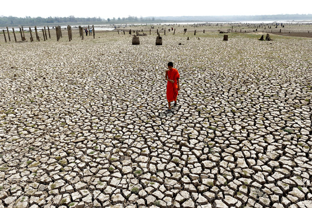 A photo made available on 14 March 2016 shows a Thai Buddhist novice monk walking on drought parched land at a ruined village which has been underwater after the Mae Chang reservoir dried up in Lampang province, northern Thailand, 12 March 2016. The ruined village including ancient temple had been underwater for 34 years since the Mae Chang reservoir was built in 1982, the area has now re-emerged after water in the reservoir dried up caused by the severe drought. Thailand is facing the worst drought in decades hardest hit by El Nino phenomenon combined with seasonal hot weather. (Photo by Rungroj Yongrit/EPA)