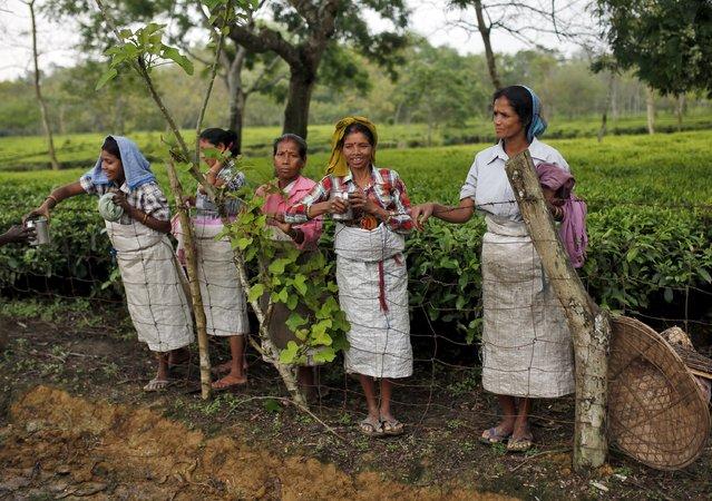 Tea garden workers rest during a tea break inside Aideobarie Tea Estate in Jorhat in Assam, India, April 21, 2015. (Photo by Ahmad Masood/Reuters)