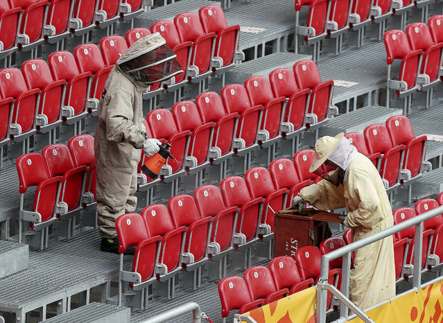Firefighters in protective dress are removing a swarm of bees that settled at a stadium in Lodz, Poland, Friday, June 7, 2019, just hours before the first quarter-finals match between Ukraine and Colombia of the U-20 football tournament. (Photo by Czarek Sokolowski/AP Photo)