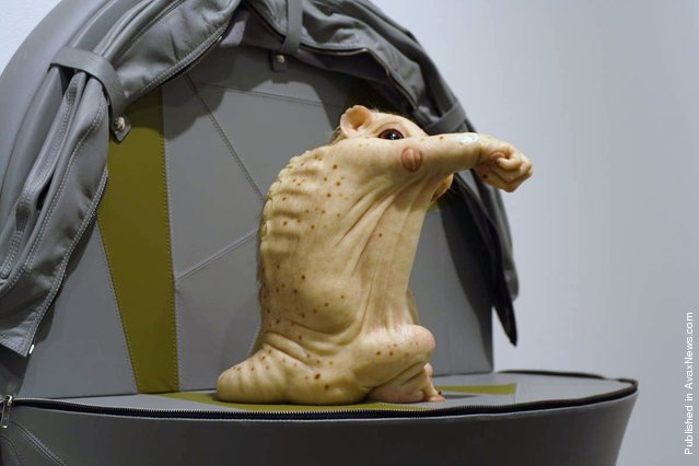 Progenitor and Offspring by Patricia Piccinini