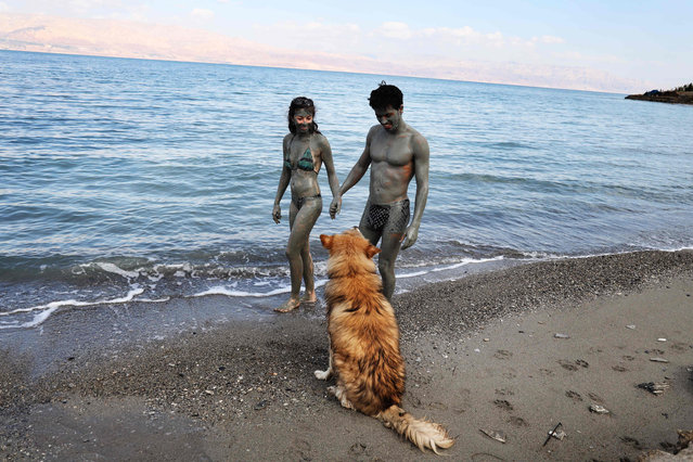 A dog looks on as an Israeli couple covered in mud walks along the shore of the Dead Sea, south of West Bank Palestinian city of Jericho on May 6, 2020, after authorities opened to the public natural reserves that were shut down in order to prevent the spread of the novel coronavirus. (Photo by Menahem Kahana/AFP Photo)