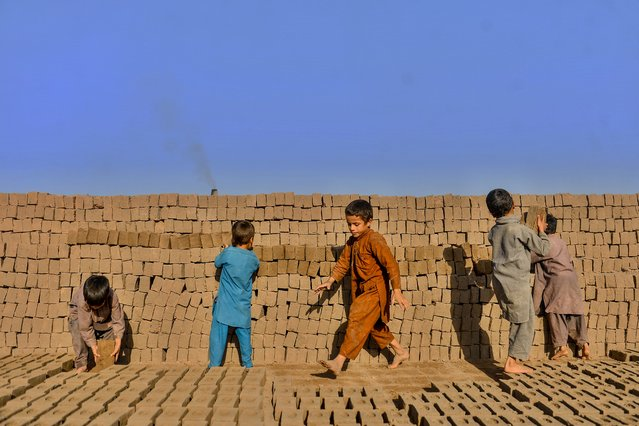 Young children collect bricks as they work as labourers at a brick factory on the outskirts of Herat, Afghanistan on August 26, 2020. (Photo by Hoshang Hashimi/AFP Photo)