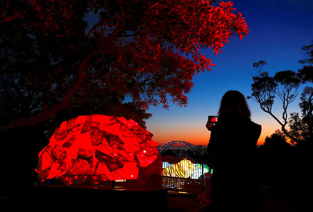 A woman uses her iPhone to take photographs of illuminated sculptures shaped as animals during a preview of Vivid Sydney, promoted as the world's largest festival of light, music and ideas, at Sydney's Taronga Zoo in Australia, May 20, 2018. The festival will run for 23 days, starting on May 25. (Photo by David Gray/Reuters)