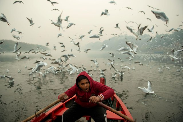 A man rides a boat as Seagulls fly over the waters of river Yamuna in New Delhi, India on November 8, 2020. A flock of Seagulls fly along the Yamuna River at Nigam Bodh Ghat. During the onset of winter season, flocks of Siberian seagulls migrate through Delhi making a temporary home at the river Ganga and Yamuna. This place is a haven for bird watchers and photographers. During morning hours birds are often fed by devotees who arrive to bathe at the river. (Photo by Pradeep Gaur/SOPA Images/LightRocket via Getty Images)