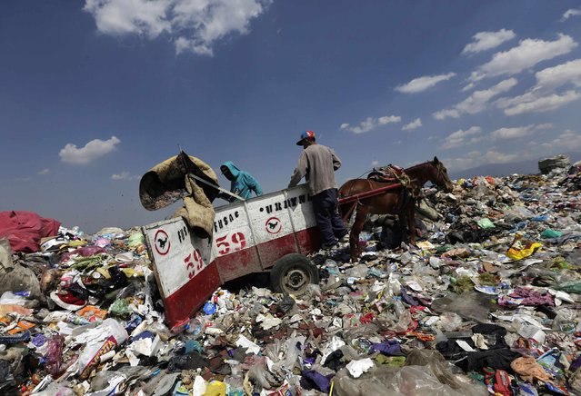 Garbage collectors, with their horse and cart, unload rubbish at the municipal dump in Nezahualcoyotl, on the outskirts of Mexico City, February 18, 2015. Hundreds of horse or donkey-drawn carts will disappear from the streets of a municipality in the state of Mexico, located on the outskirts of Mexico City, and will be replaced by motorized vehicles, local authorities said. (Photo by Henry Romero/Reuters)