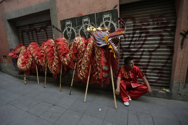 An artist sits next to a Chinese dragon before he performs a traditional Chinese dragon dance during Lunar New Year celebrations in Chinatown in Mexico City February 20, 2015. The Chinese Lunar New Year began on February 19 and marks the start of the Year of the Sheep (also known as the Year of the Goat or Ram). (Photo by Henry Romero/Reuters)