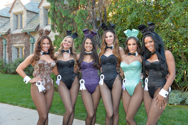 (L-R) Playmate of the Year 2005 Tiffany Fallon, Playmate of the Year 2006 Kara Monaco, Playmate of the Year 2013 Raquel Pomplun, Playmate of the Year 2008 Jayde Nicole, Playmate of the Year 2012Jaclyn Swedberg and Playmate of the Year 1990 Renee Tenison pose at Playboy's 60th Anniversary special event on January 16, 2014 in Los Angeles, California. (Photo by Charley Gallay/Getty Images for Playboy)