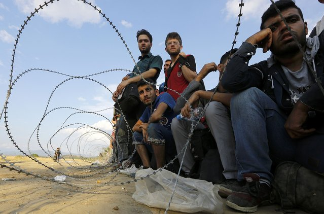 Syrian refugees sit in front of barbed-wire at the Greek-Macedonian border, near the village of Idomeni, August 21, 2015. (Photo by Yannis Behrakis/Reuters)