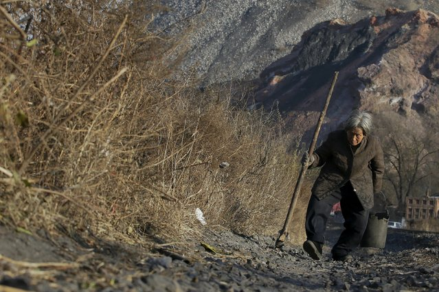 An elderly villager walks along a railway, which is used to transfer coal, in front of a coal gangue hill outside Shuanghe coal mine from the state-owned Longmay Group on the outskirts of Jixi, in Heilongjiang province, China, October 24, 2015. (Photo by Jason Lee/Reuters)