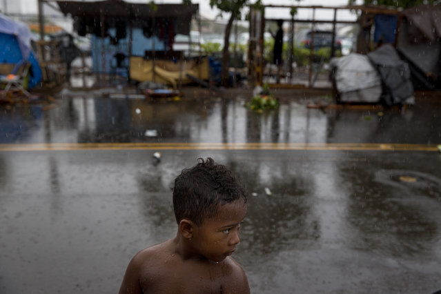 In this Wednesday, August 26, 2015 photo, a boy stands in the rain in front of makeshift tents at a homeless encampment in the Kakaako district of Honolulu. Micronesians made up about a third of the Kakaako homeless encampment. (Photo by Jae C. Hong/AP Photo)