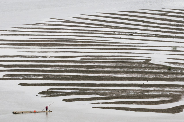 """""""Texture After A Low Tide"""". This is one of the wonders of the sea at low tide, we can just imagined it was a peacock feather, and a boat adventures. Location:Qi Du, Xiapu, Fu Jian of China. (Photo and caption by Cheryl Tan/National Geographic Traveler Photo Contest)"""