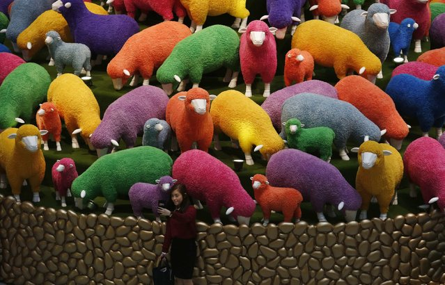 A woman takes a selfie in front of a Lunar New Year display featuring sheep at a shopping mall in Hong Kong, February 13, 2015. (Photo by Bobby Yip/Reuters)