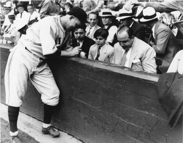 Surrounded by his watchful lieutenants, Chicago's crime boss Al Capone, right, and his 12-year-old son, Al Jr. gets Gabby Harnett of the Cubs to autograph a baseball just before the Cubs defeated the White Sox, 3 to 0 on September 9, 1931. Note the watchfulness of one of Capone's bodyguards behind him, at the ready as a popcorn vendor rubbed against him. (Photo by AP Photo)