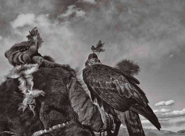 A hunter looks out over the harsh landscape with his eagle. (Photo by Palani Mohan)