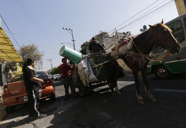 Garbage collectors, with their horse and cart, collect rubbish in Nezahualcoyotl, on the outskirts of Mexico City, February 18, 2015. (Photo by Henry Romero/Reuters)