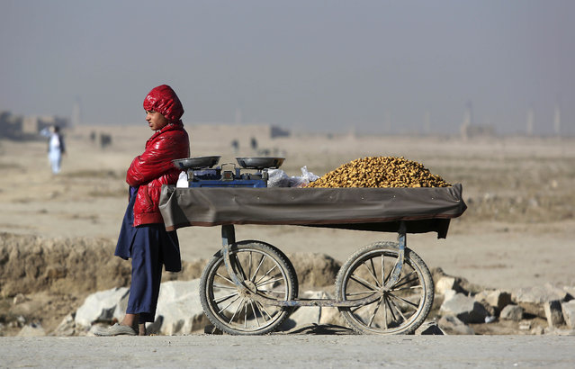An Afghan street vendor, selling peanuts, waits for customer on the outskirts of Kabul, Afghanistan, Sunday, December 4, 2016. (Photo by Rahmat Gul/AP Photo)