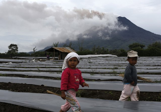 Children walk at a potato farm as Mount Sinabung spews ash as seen from Naman Sukan Debi village in Karo district, Indonesia's North Sumatra province, November 28, 2013. Indonesia ordered the evacuation of 15,000 residents near the active volcano in the west of the vast archipelago on Sunday as authorities raised the alert for the emergency to the highest level. (Photo by Reuters/Beawiharta)