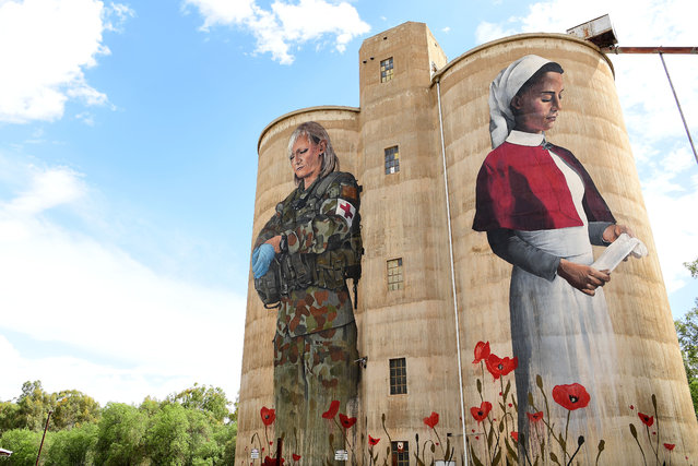 The Devenish Silo Artwork painted by Melbourne artist Cam Scale is seen on March 04, 2019 in Devenish, Australia. The Silo Art Trail is Australia's largest outdoor gallery. The trail started in 2016 and stretches over 200km, linking Brim with neighbouring towns Lascelles, Patchewollock, Rosebery, Rupanyup and Sheep Hills in the Wimmera Mallee area of rural Victoria. The trail recognises and celebrates the region's people through a series of large-scale mural portraits painted onto grain silos, many of which date back to the 1930s. (Photo by Quinn Rooney/Getty Images)
