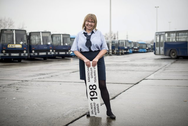 Bus driver Ildiko Filep Jozsefne holds a route plate in the South Pest bus garage of the Budapest Transport Company (BKV) in Budapest, Hungary, 29 February 2016. The photo series was created to mark the International Women's Day (IWD), which was marked for the first time in 1911 and is celebrated on 08 March since 1913. March 08 was proclaimed by the United Nations General Assembly as the day for women's rights and world peace in 1977. (Photo by Bea Kallos/EPA)