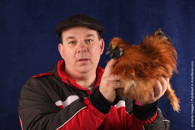 Dilwyn Green, from North Wales, holds his 7 month old Gold Silkie Bantam