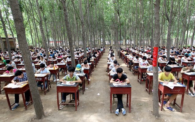 Students take term final exam among trees outside classroom building at a middle school in Xinxiang, Henan province, China, July 3, 2015. The school set up the exam outdoor to create a more comfortable environment for the students, according to local media. (Photo by Reuters/Stringer)