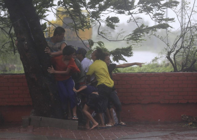 People take cover under a tree after strong winds brought by Typhoon Rammasun, locally called Glenda, battered the capital, metro Manila July 16, 2014.  Philippine authorities evacuated almost 150,000 people from their homes and shuttered financial markets, government offices, businesses and schools on Wednesday as typhoon Rammasun gathered strength and hit the capital, Manila. (Photo by Romeo Ranoco/Reuters)