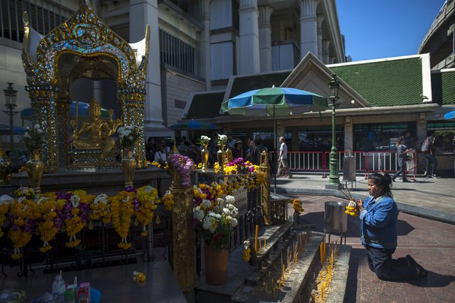 A woman pays her respects at the Erawan shrine, the site of Monday's deadly blast, in central Bangkok, Thailand, August 19, 2015. (Photo by Athit Perawongmetha/Reuters)