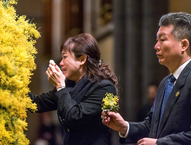Sprigs of wattle blossoms are placed on a wreath by mourners during a national memorial service for the victims of Malaysia Airlines Flight 17 at St Patrick�s Cathedral in Melbourne, Australia Thursday, August 7, 2014. All 298 people, including 38 Australian citizens and residents, on board flight MH17 were killed when the plane was shot down over eastern Ukraine last month. (Photo by Mark Dadswell/AP Photo)