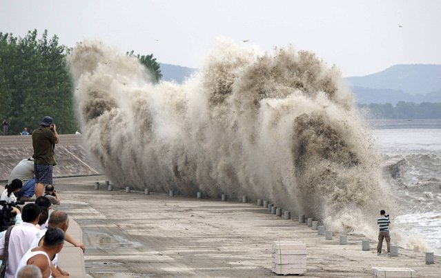 People take pictures and videos as tidal bores surge past a barrier on the banks of Qiantang River, in Jiaxing, Zhejiang province August 12, 2014. (Photo by Reuters/Stringer)