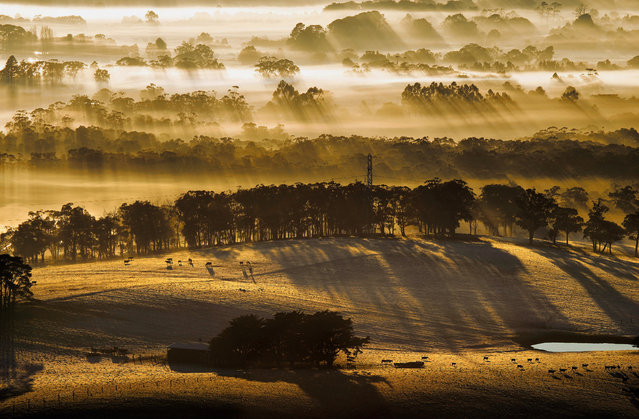 June. Sunrise streaks through fog as seen from Mount Buninyong, Victoria. (Photo by Andrew Thomas/Australian Bureau of Meteorology)