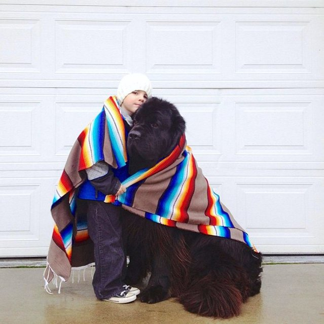 Hats off (or on) to Julian for sharing his blanket with his good buddy. Not that the furry beast needs it... (Photo by Stasha Becker/Rex Features)