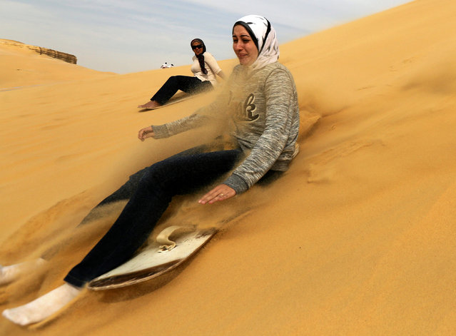 A woman sandboards on the mountain in Wadi el-Rayan Fayoum, Egypt, November 18, 2016. (Photo by Mohamed Abd El Ghany/Reuters)