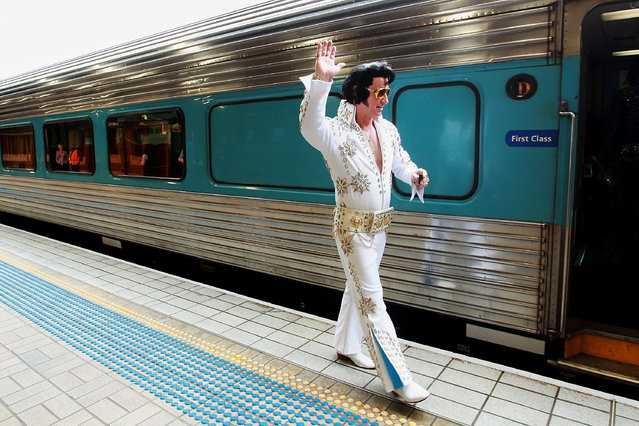A Elvis tribute artist prepares to board the 'Elvis Express' at Central Station on January 7, 2016 in Sydney, Australia. (Photo by Lisa Maree Williams/Getty Images)