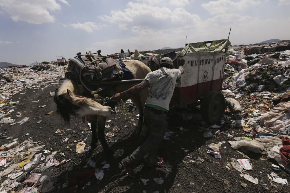 Mexico Modernizes Garbage Collection Service