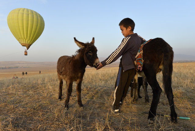 A Kyrgyz boy pets a donkey as other people launch a balloon at sunset outside Tash-Dyobyo village, 12 kilometers (7,5 miles) south of Bishkek, Kyrgyzstan, Saturday, October 17, 2020. The political turmoil that has gripped Kyrgyzstan hasn't reached this quiet village in the mountains near the capital, where residents talk about the country's feuding elites with resignation and disdain. (Photo by Vladimir Voronin/AP Photo)