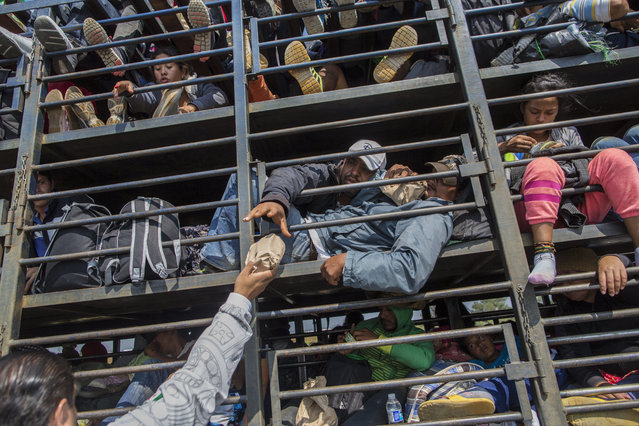 Central American migrants, part of the caravan hoping to reach the U.S. border, receive donated food while traveling on a truck, in Celaya, Mexico, Sunday, November 11, 2018. Local Mexican officials were once again Sunday helping thousands of Central American migrants find rides on the next leg of their journey toward the U.S. border. (Photo by Rodrigo Abd/AP Photo)