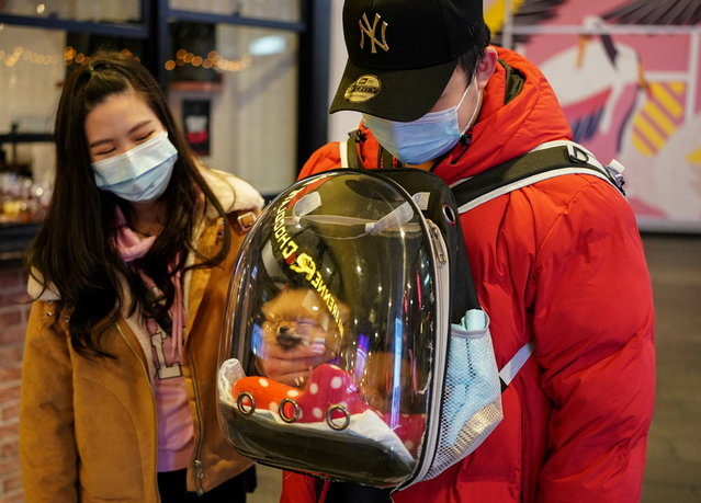 A man wearing a protective face mask pets his puppy inside a backpack while walking through the city centre during a lockdown to curb the spread of a coronavirus disease (COVID-19) outbreak in Sydney, Australia, July 6, 2021. (Photo by Loren Elliott/Reuters)