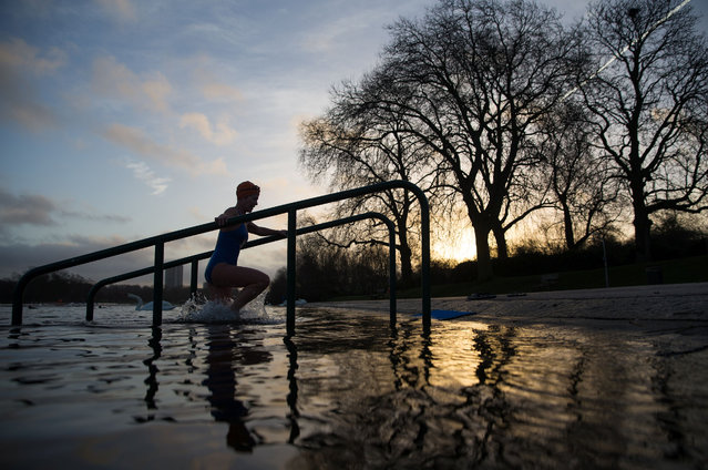A swimmer leaves the water after an early morning swim in the Serpentine Lake in Hyde Park, central London on February 3, 2017. (Photo by AFP Photo)