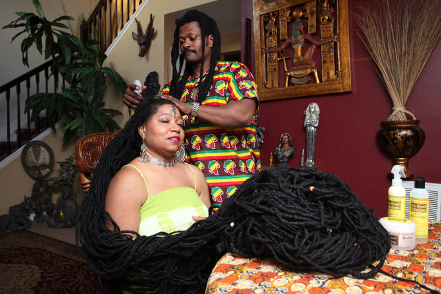 Asha Mandela gets her hair tended to by her husband Emmanuel Chege at home in Florida, US on March 23, 2016. Mandela has the world's longest hair and her dreadlocks measure 55ft – longer than a London bus. (Photo by Ruaridh Connellan/Barcroft USA)