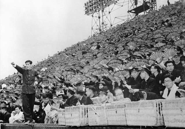 Spectators equipped with fans watch a baseball game between Waseda and Keio Universities at Meiji Park, Tokyo, on June 1, 1954. At left Japanese counterpart of American cheerleader leads rooters whose fans are painted with school colors. (Photo by AP Photo via The Atlantic)