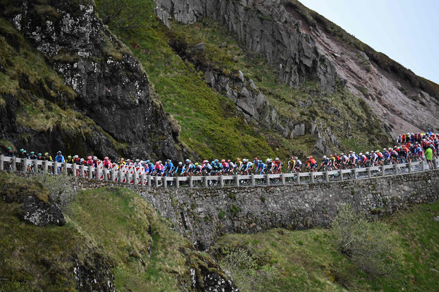 The pack rides during the sixth stage of the 71st edition of the Criterium du Dauphine cycling race, 229 km between Saint-Vulbas Plaine de l'Ain and Saint-Michel-de-Maurienne on June 14, 2019. (Photo by Anne-Christine Poujoulat/AFP Photo)