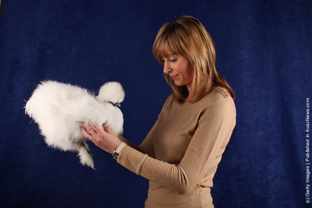 Louise Hidden, from Derbyshire, holds her 6 month old White Silkie Pullet